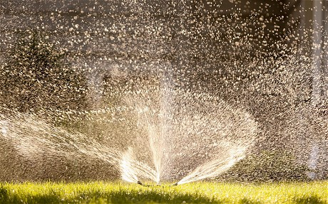 Sprinkler_on_a_law_2620248c